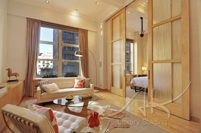staging_luxury #6
